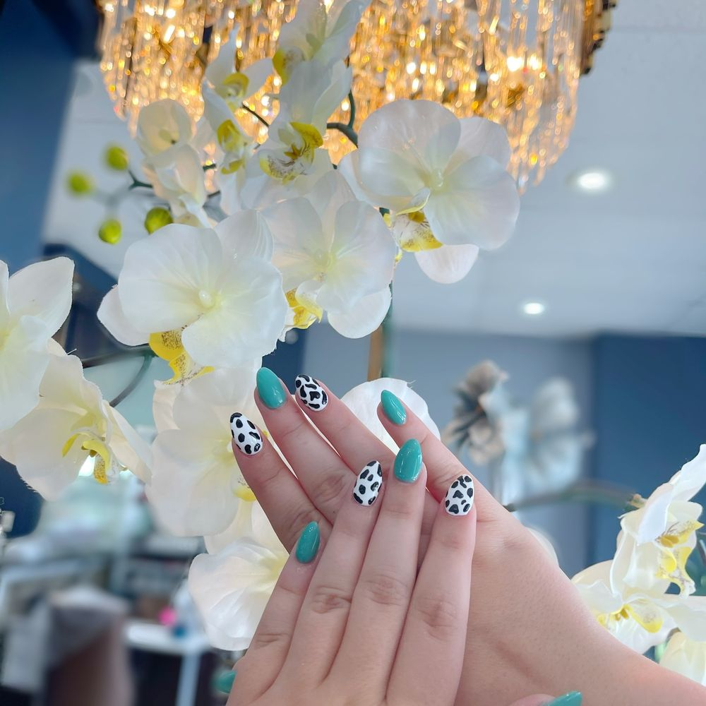 Modeste Nails And Spa: 5308 Washington Pike, Knoxville, TN