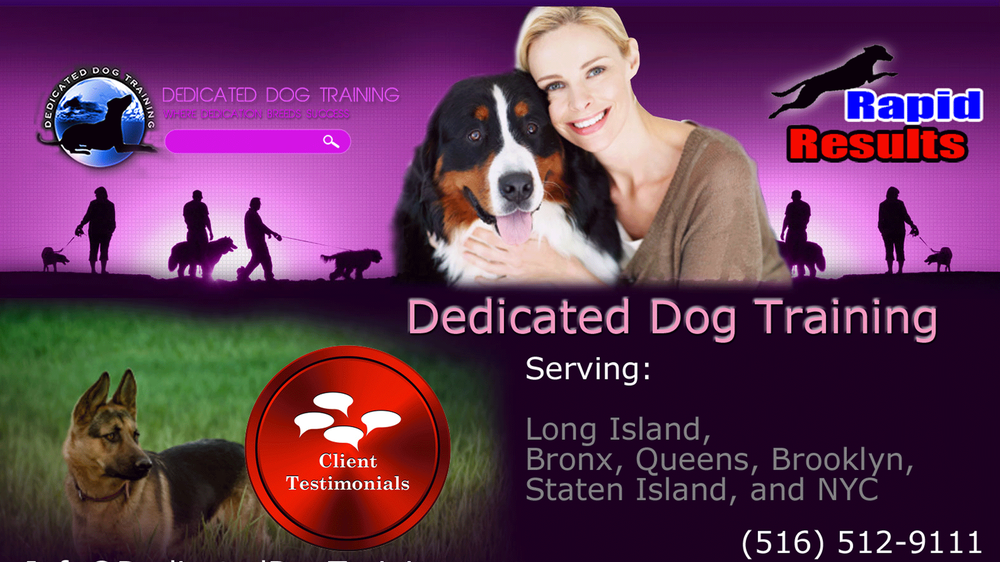 Dedicated Dog Training: 371 Loring Rd, Levittown, NY