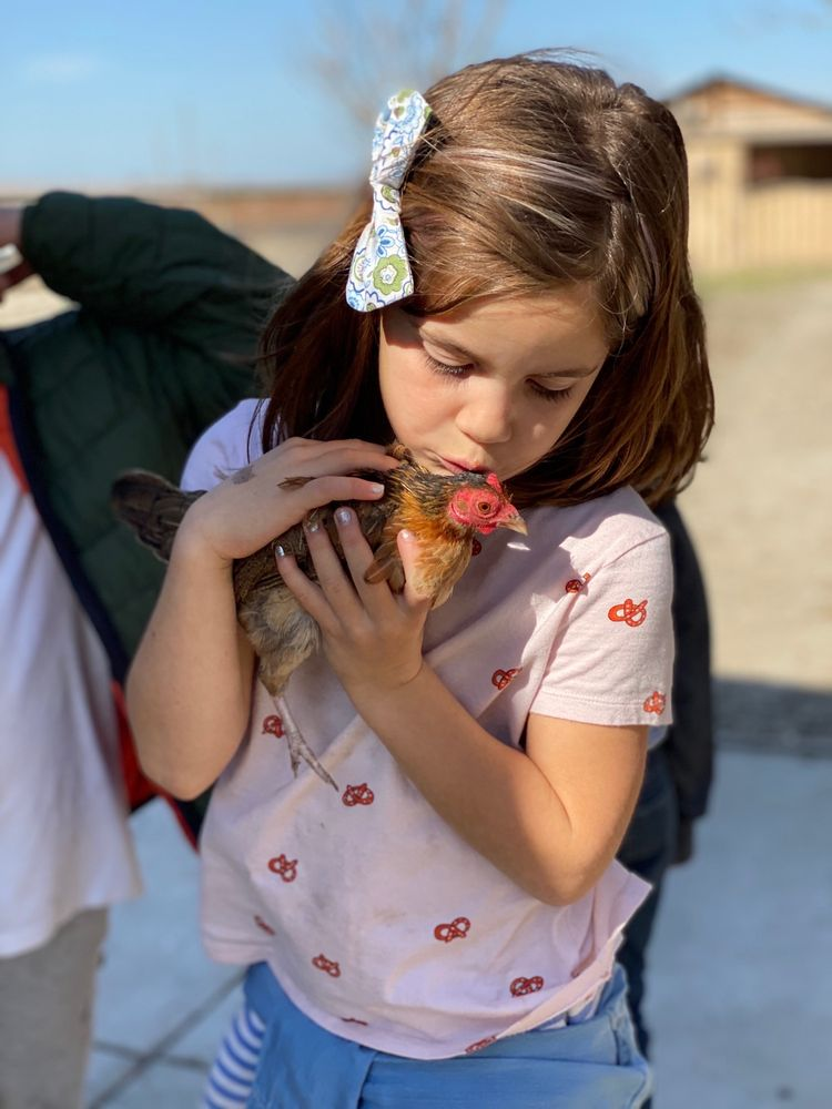 Harvest Home Animal Sanctuary: French Camp, CA