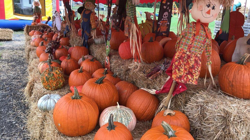 Farm Stuff: 12889A Minnieville Rd, Woodbridge, VA