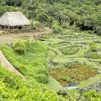 Photo Of National Tropical Botanical Garden   Koloa, HI, United States.  This Is