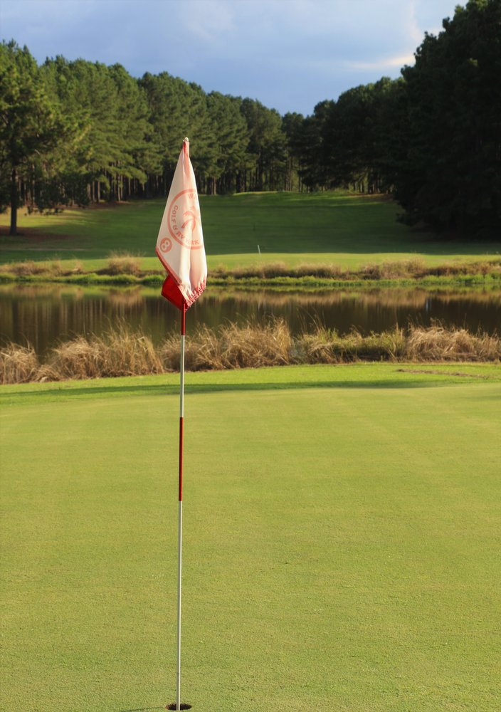 Wanee Lake Golf & RV Park: 3821 Ga Hwy 112 W, Ashburn, GA