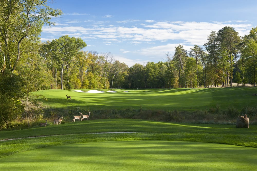 The Golf Club at Lansdowne: 44050 Woodridge Pkwy, Leesburg, VA