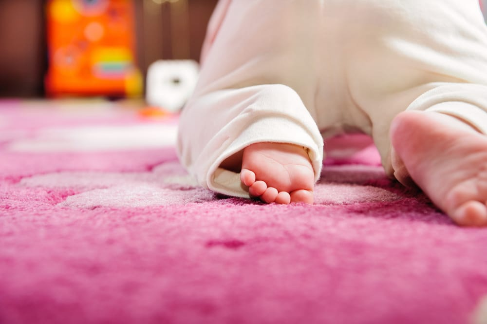 Keep your carpet fresh and clean for your little ones yelp - Often clean carpets keep best state ...