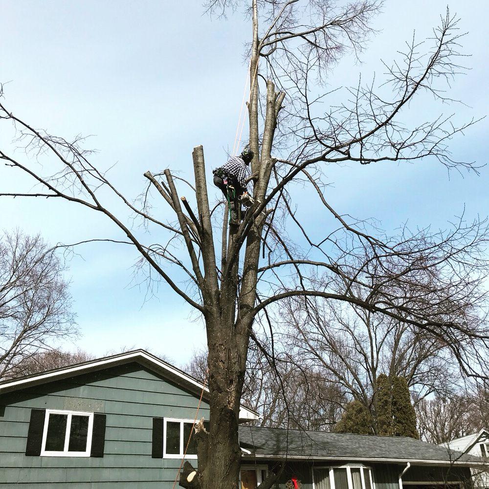 Arbor Pro Tree Service: 1805 33rd St, Moline, IL