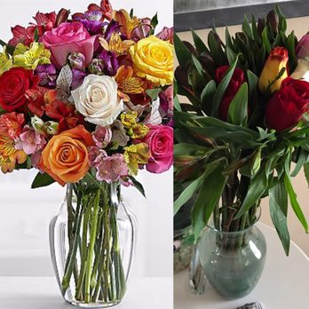 ProFlowers is a flower company that mainly sells natural fresh flowers as well as artificial flowers for various occasions. When in need of graduation, valentines, funeral flowers or any type of flowers you can order them online and with the qq9y3xuhbd722.gq coupons below you can always enjoy the scent at affordable prices.