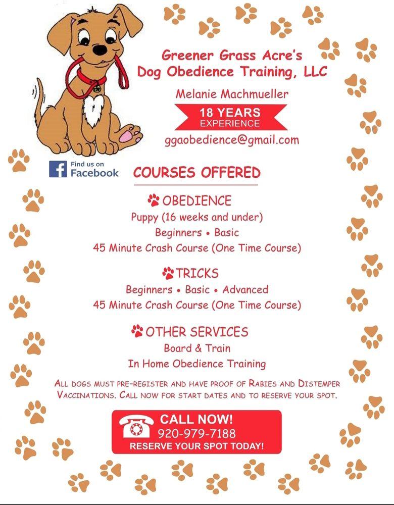 Greener Grass Acre's Dog Obedience Training,  LLC: 34 S Main St, Brandon, WI