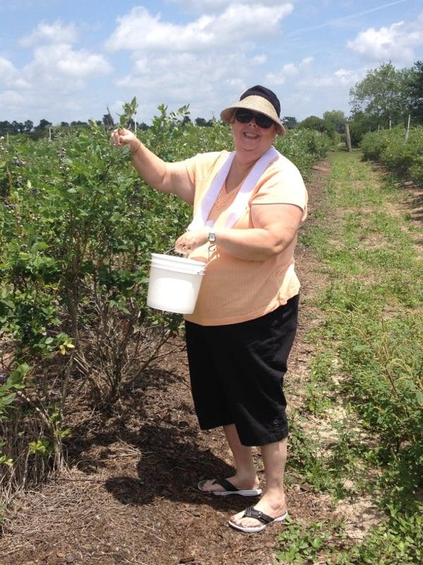 Bonnie Blueberries: 201 Wendel Ave, Lithia, FL