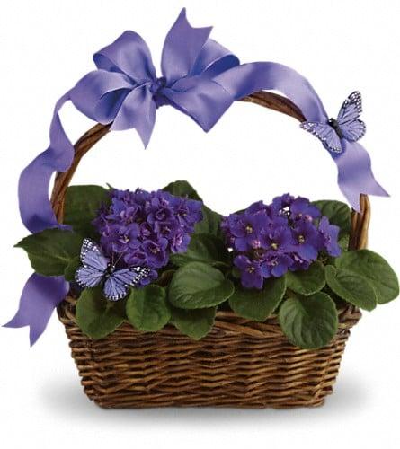 Sponseller's Flower Shop Inc.: 2 West Main St, Berryville, VA