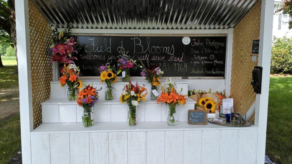 Field of Blooms: 11089 Mantua Center Rd, Mantua, OH