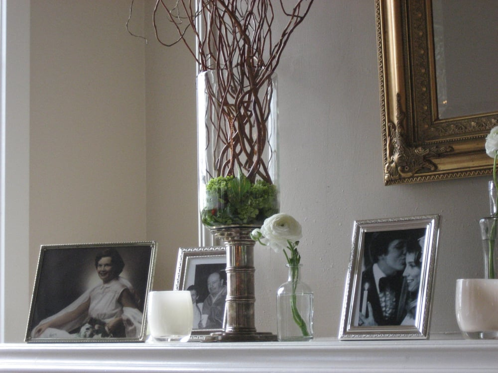 Miniature Green Hydrangea In Base Of Vase With Curly Willow To Add
