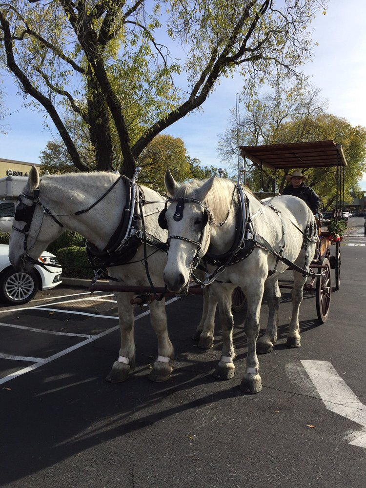 McHenry Village: 1700 McHenry Ave, Modesto, CA