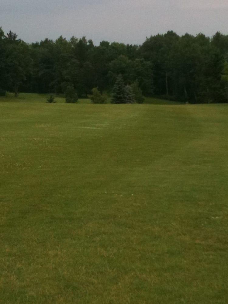 Greenwood Golf Course: 1361 Swenson Rd NE, Bemidji, MN