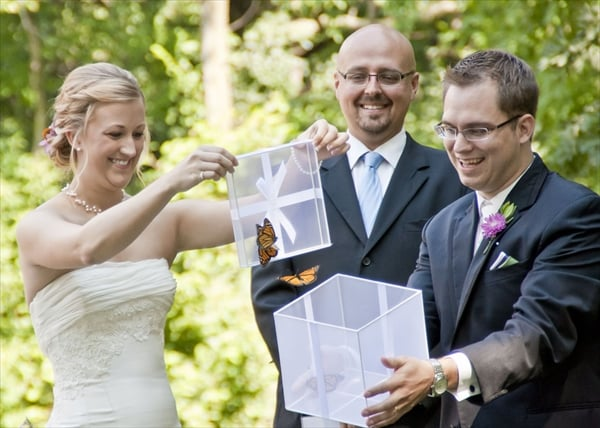 Tie The Knot Wedding Ceremonies