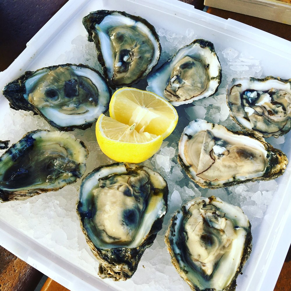 Bluepoint Oyster 99 Cent Or Shucked Yelp
