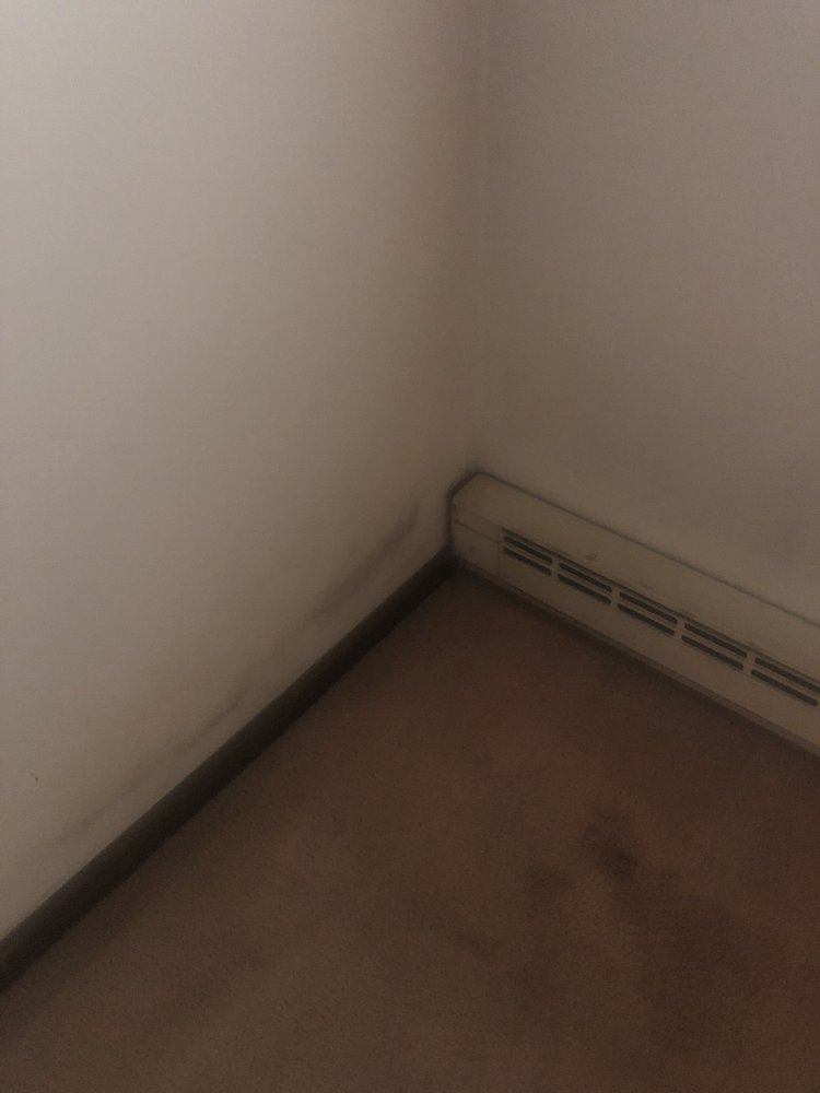 Ellicott Oak Apartments: 329 Howard Ave, Jamestown, NY