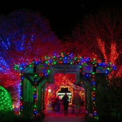 Great Photo Of Holiday Light Pros   Asheville, NC, United States Great Pictures