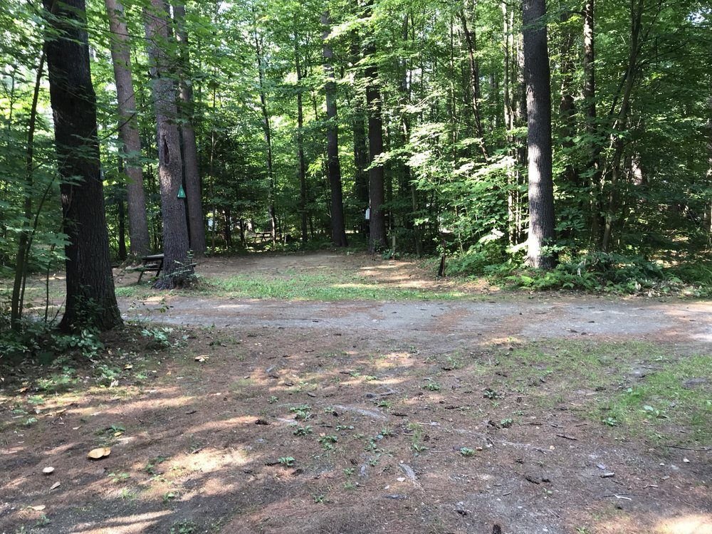 Tree Farm Campground: 53 Skitchewaug Trl, Springfield, VT