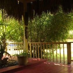Bamboo Your Privacy - 71 Photos & 16 Reviews - Nurseries