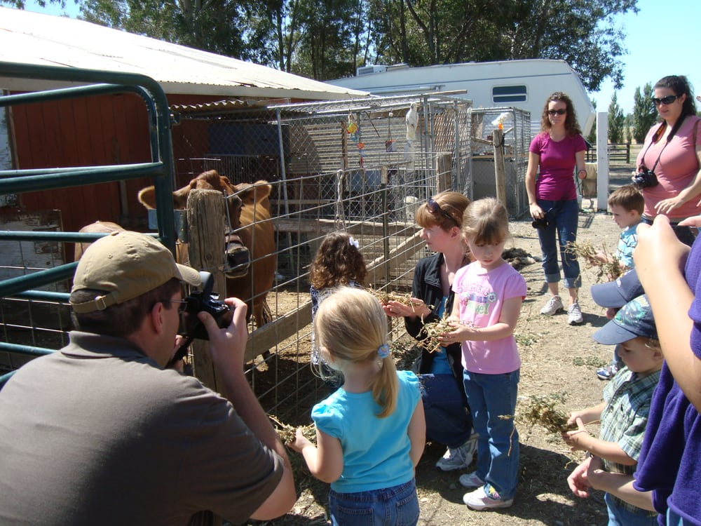 Phoenix Ranch / CETA Foundation: 5046 Midway Rd, Vacaville, CA