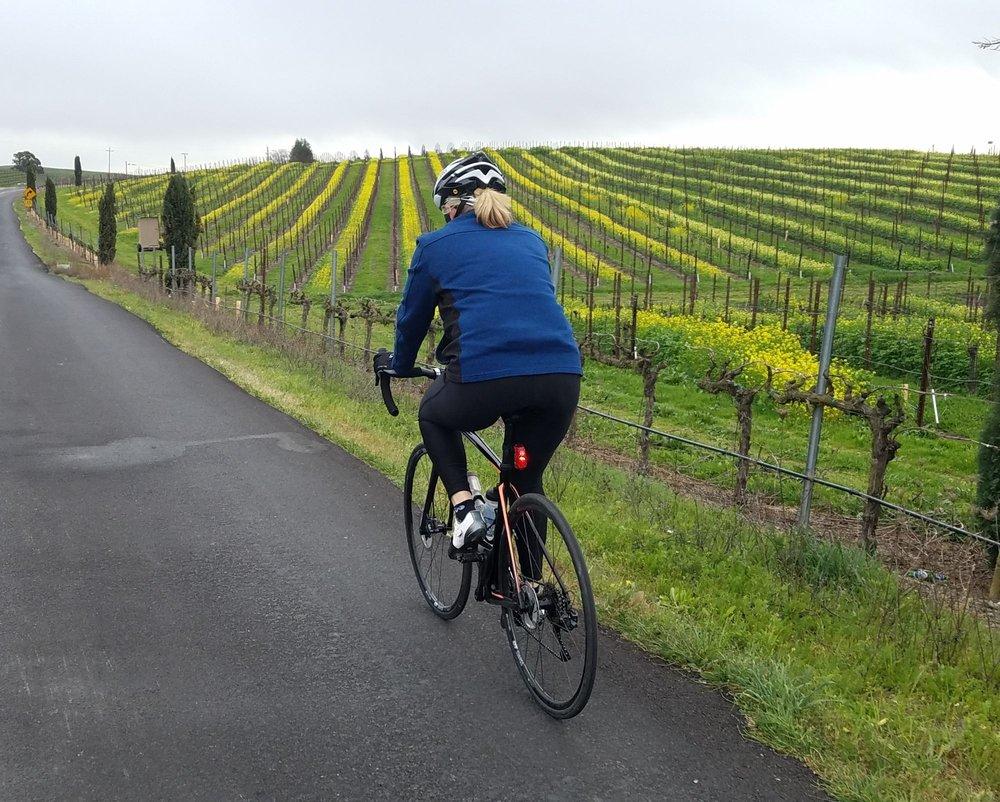 Wine Country Bikes: 61 Front St, Healdsburg, CA