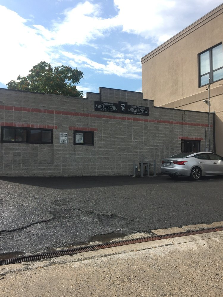 Port Chester Animal Hospital: 432 N Main St, Port Chester, NY