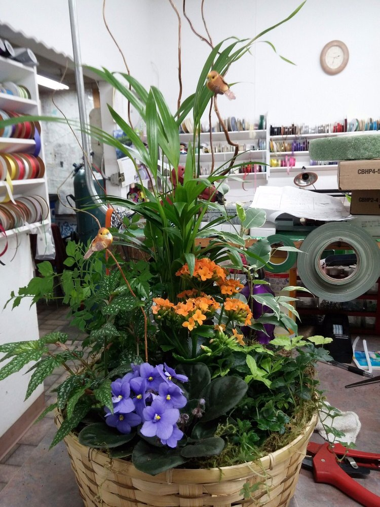 OK Floral Of Forest Grove: 2015 Pacific Ave, Forest Grove, OR