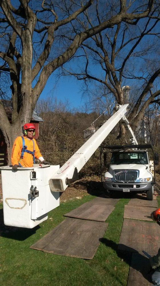 Slater Diederich Tree Care: Prairie du Sac, WI