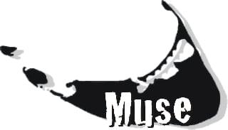 Muse: 44 Surfside Rd, Nantucket, MA