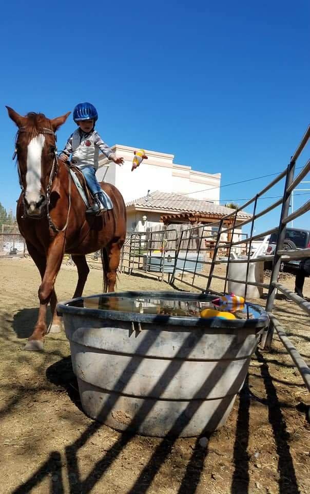 Rancho Escondido Therapeutic Riding: 5386 Santa Teresita Dr, Santa Teresa, NM