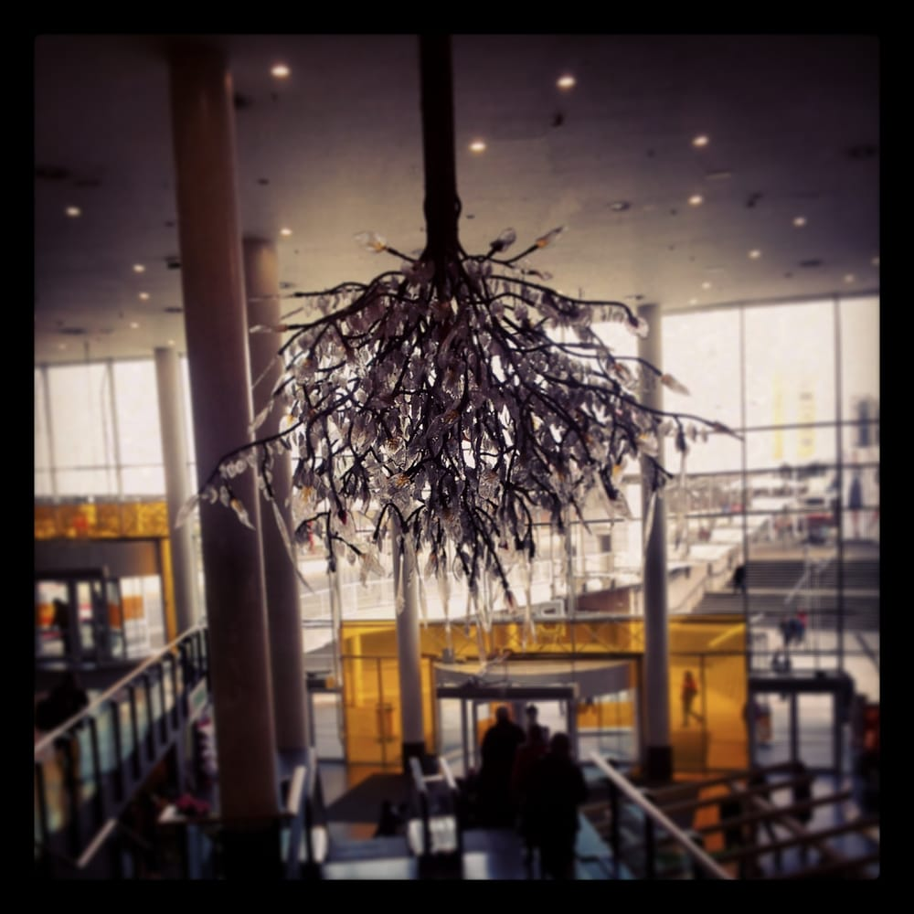 The glass tree-shaped chandelier - Yelp