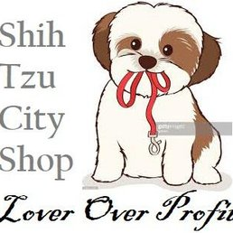 Shihtzu City 11 Photos Pet Adoption 3340 22nd St Se