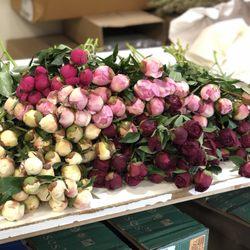 Photo of Alaska Wholesale Flower Market - Anchorage, AK, United States. Thoroughly enjoy