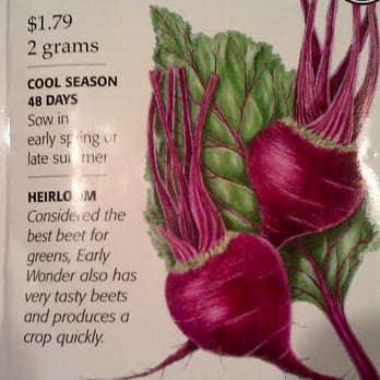 Photo Of Armstrong Garden Centers   Anaheim, CA, United States. Organic  Beet Seeds