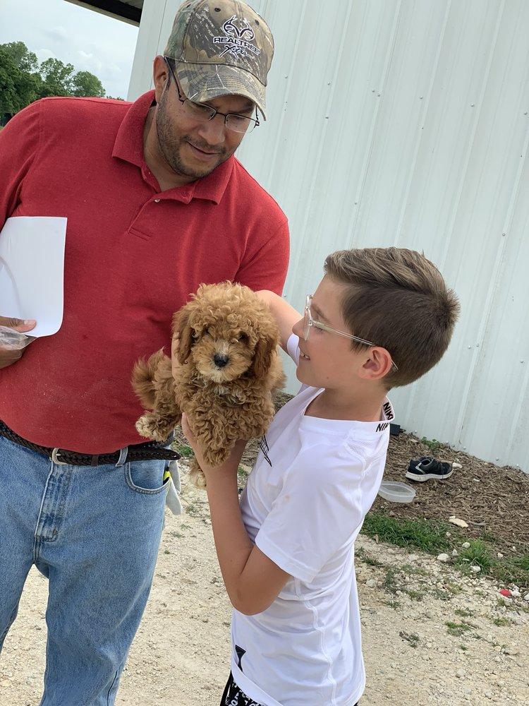 Southland Puppies: Covington, TX