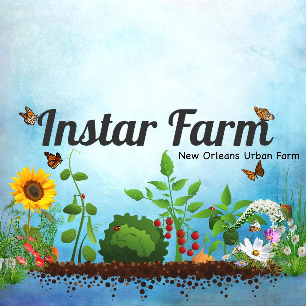 Instar Farms