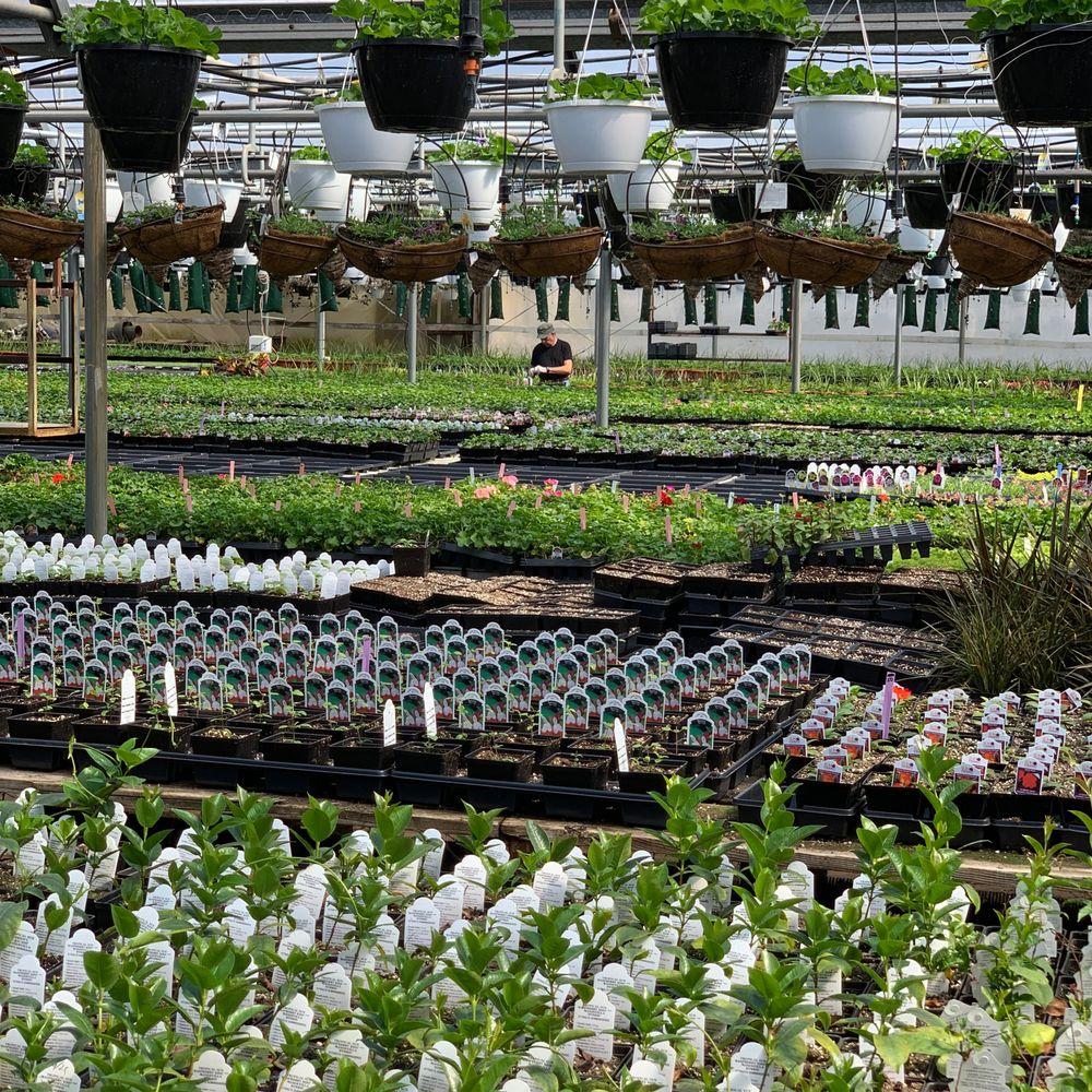 Eckert's Greenhouse & Perennials