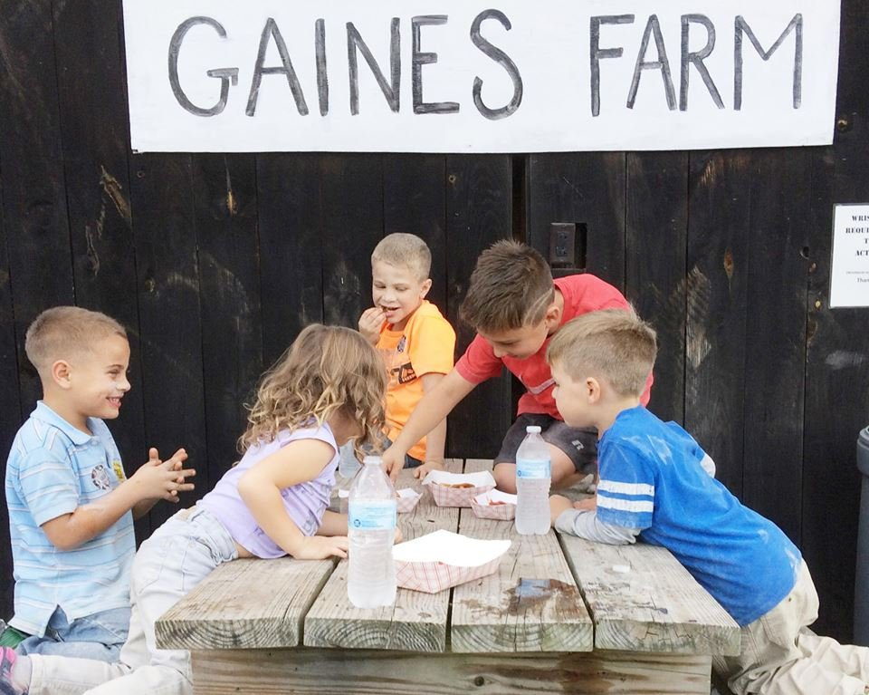 Gaines Farm & Kennel: 6343 Coolidge Hwy, Guilford, VT