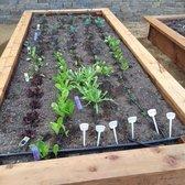 StartOrganic Vegetable Garden Service 73 Photos 13 Reviews
