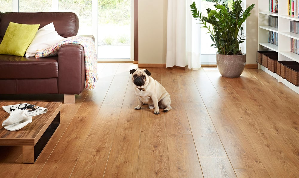img download the floor reviews forever traditionsforever timeless full flooring us stylish brochure balterio traditions floors ivc laminate