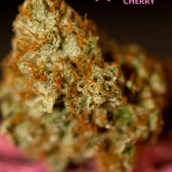 Pink House Cherry Cans Clinics 111 S Madison St Creek Denver Co Phone Number Yelp