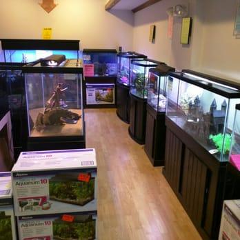 Pet Supplies Fish & Aquariums Knowledgeable Fish Bag X 1 Aquatic Polythene 30 X 16 Inch King British Transport Fish Tank Bag Moderate Cost