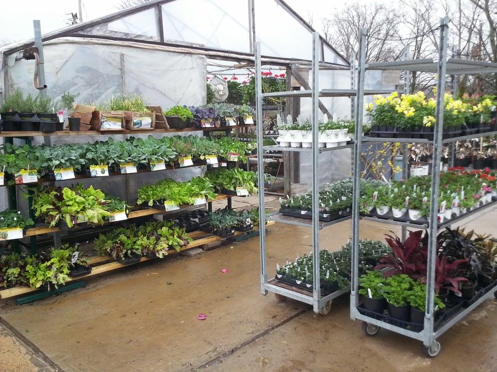 Cantrell Gardens Nursery: 7800 Cantrell Rd, Little Rock, AR