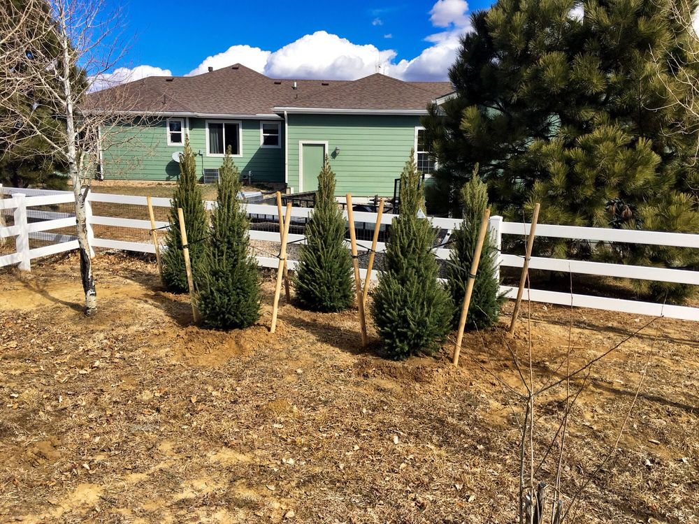 The Sprucery Garden Center: 4647 N Hwy 83, Franktown, CO