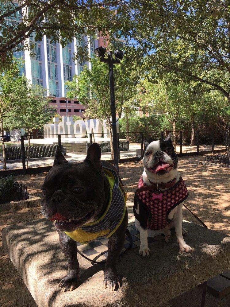 Bagby Park: 415 Gray St, Houston, TX