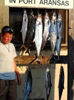Kingfishing with fun 4 all deep sea charters out of port - Private deep sea fishing port aransas ...