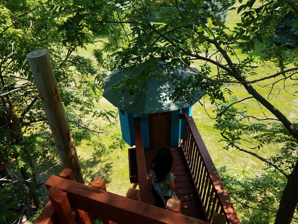 Tree Creations: 4677 Lakeville Groveland Rd, Geneseo, NY