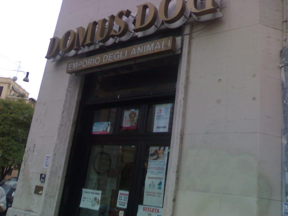 Domus Dog  Lemmikkieläimet  Via Chiana, 102, Salario