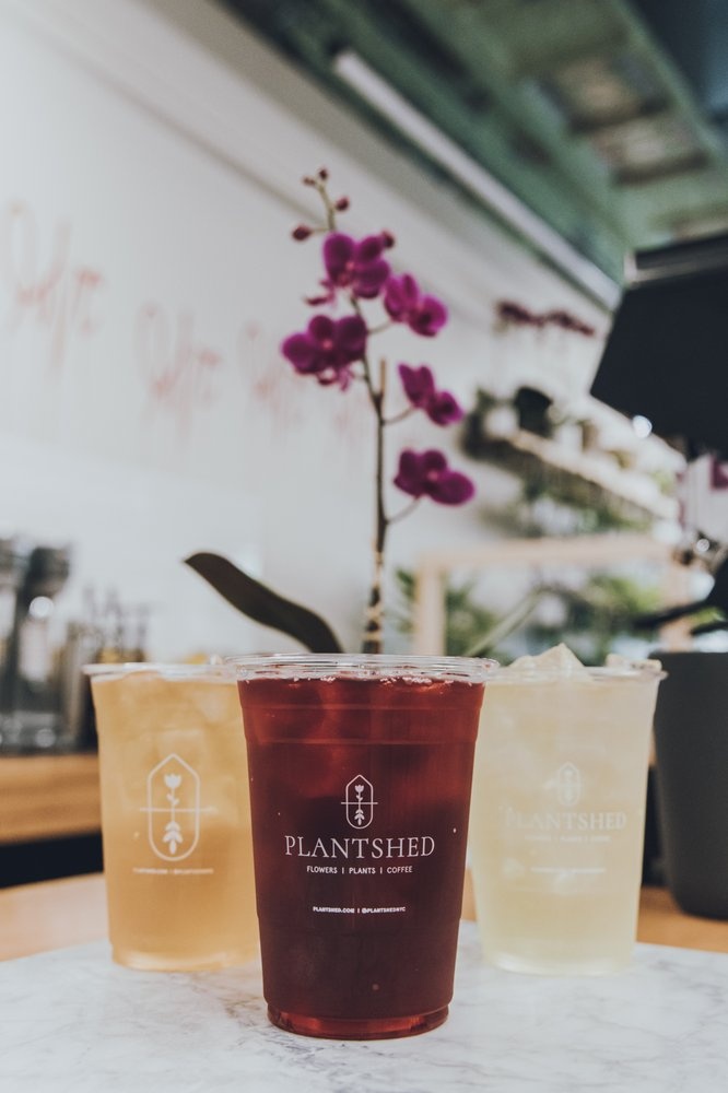 PlantShed With Englewood Florist: 47 E Palisade Ave, Englewood, NJ