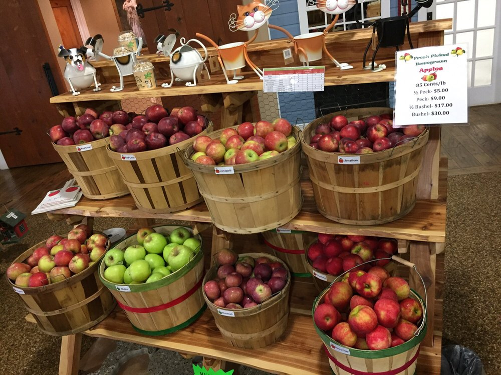 Stokes Homestead Farm Market: 13988 County Rd 215, Grand Junction, MI